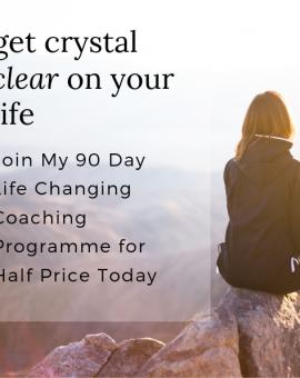 90 Day Coaching Programme